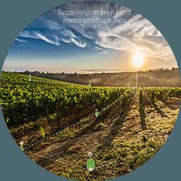 AgroPestAlert Actividad