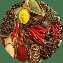 actividad Kiva Foods